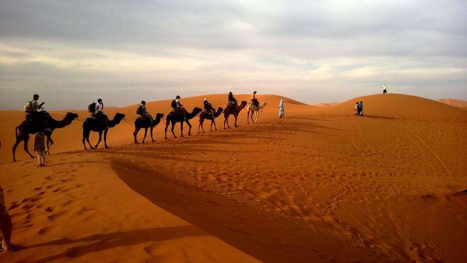 caravan-desert-safari-dune-53537